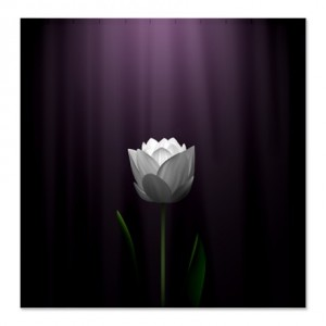 Dark Purple Lotus Blossom Shower Curtain