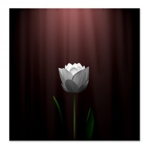 Dark Wine Lotus Blossom Shower Curtain