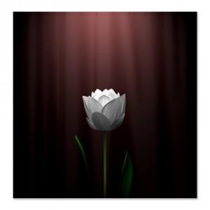 Dark Wine Lotus Blossom Shower Curtain