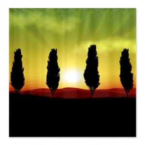 Sunset Guardian Trees Shower Curtain