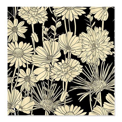 Black White 3a Shower Curtain