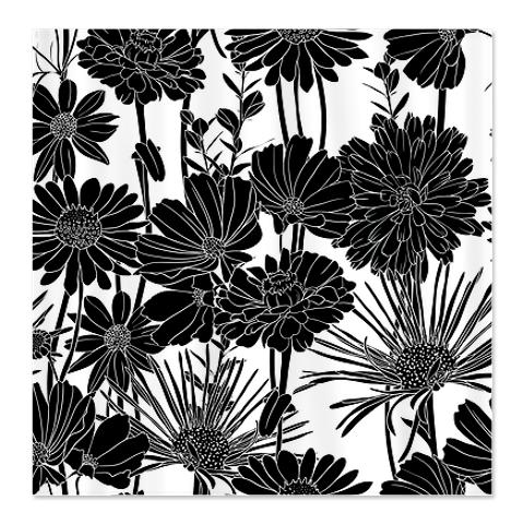 Black White 3c Shower Curtain